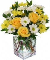 """Sunshine"" Yellow roses with yellow and white daisies arranged in a cube vase!"