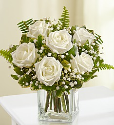 6 Beautiful Premium White Roses that resemble garden roses arranged in a cube vase with baby's breath.