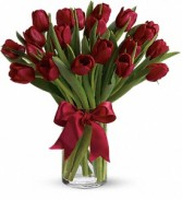 adiantly Red Tulips Red