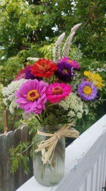 Adirondack Garden Flowers
