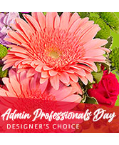 Admin Professional's Flowers Designer's Choice