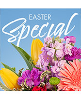 Easter Special Designer's Choice