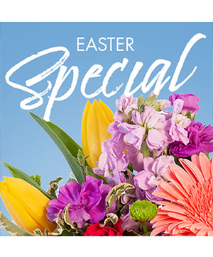 Easter Special Designer's Choice in Washburn, ND | JAVA ROSE FLORAL & CAPPUCCINO