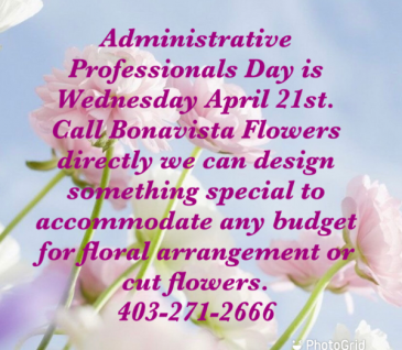 Administrative Professionals Day  Vase OR Cut Flowers No Vase