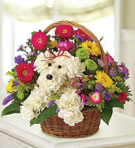 Doggie in a Basket Specialty Items in Seagoville, TX | WHITE'S FLORIST