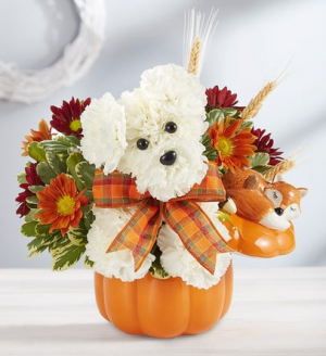 ADOGABLE FOR FALL   in Lexington, KY | FLOWERS BY ANGIE
