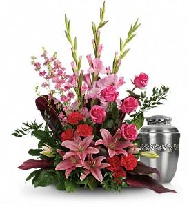 Adoring Heart           T273-9 Funeral Arrangement