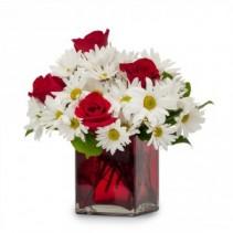 Affection Fresh Flower Arrangement