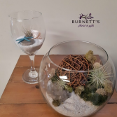 Air Plant Terrarium Planter