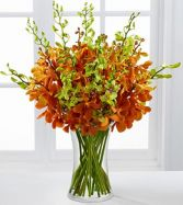 Day Break Luxury Orchid Bouquet Flower Arrangement
