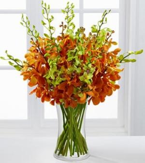 Day Break Luxury Orchid Bouquet Flower Arrangement in Burbank, CA | MY BELLA FLOWER