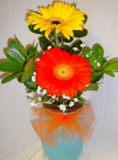 """""""Pick me up"""" 2 Large Gerbera in a colored mason  jar with filler! (color of gerberas and mason jar vary daily)"""