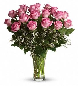 All About My Pink Long Stem Pink Rose Arrangemet- 1dz, 1 1/2 dz or 2dz shown