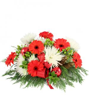 All I Want For Christmas Centerpiece in Etobicoke, ON | RHEA FLOWER SHOP