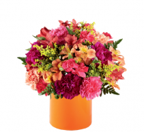 All is Bright - 159 Arrangement
