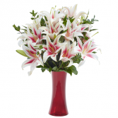 All Stargazer Vase