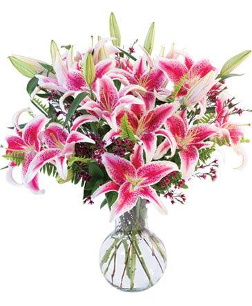All Starglazer lillies Vase