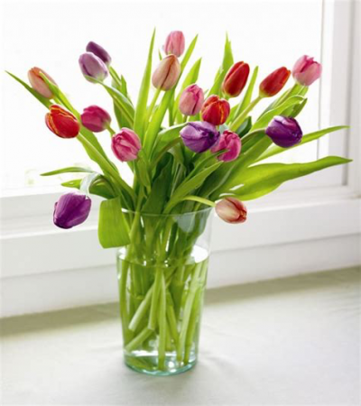 For All You Do Fresh Tulip Mix