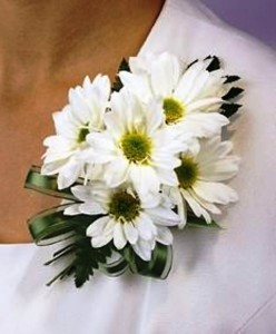 ALL WHITE DAISIES CORSAGE OR WRISTLET