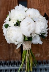 ALL WHITE PEONIES HANDHELD BOUQUET