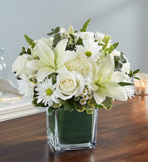 All White healing tears All white fresh flowers in a cube in Elyria, OH | PUFFER'S FLORAL SHOPPE, INC.