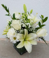 All White Well Wishes Special Design