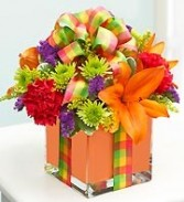 All wrapped Up  Orange Cube Arrangement