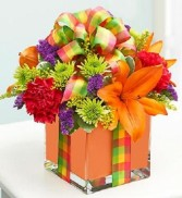 All Wrapped Up Orange Cubed Arrangement