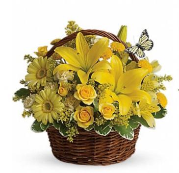 All yellow basket arrangement  Basket