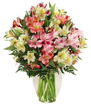 Alluring Alstroemeria Arrangement in Croton On Hudson, NY | Cooke's Little Shoppe Of Flowers
