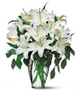 Alluring Lilies All white lily bouquet