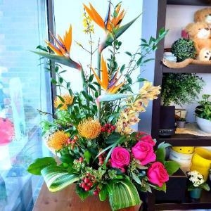 Aloha! Exotic Tropicals tropical arrangement in Warman, SK | QUINN & KIM'S FLOWERS
