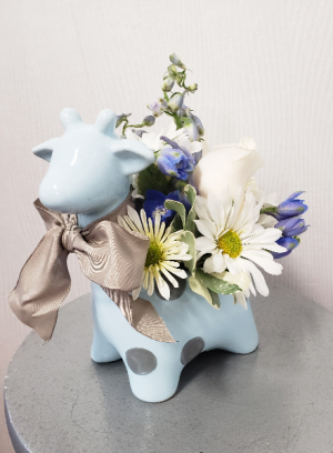 Along Came Baby Boy  in Port Huron, MI | CHRISTOPHER'S FLOWERS