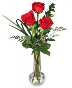 ALPHA OMICRON PI 3 RED ROSE VASE