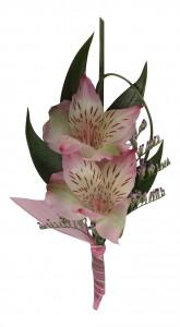 Alstroemeria Lily B33-17 Boutonniere
