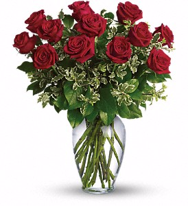 Week SPECIAL - Long Stemmed Red Roses  in Calgary, AB | Petals 'N Blooms