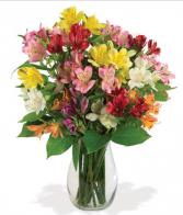 Amazing Alstroemera Vase