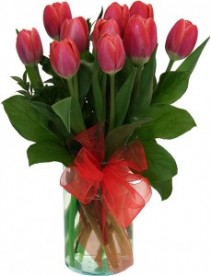 Amazing Tulips Vase arrangement filled with tulips