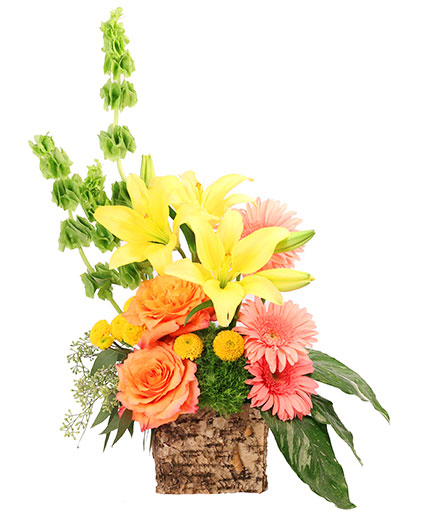 Amber Lilies Floral Design