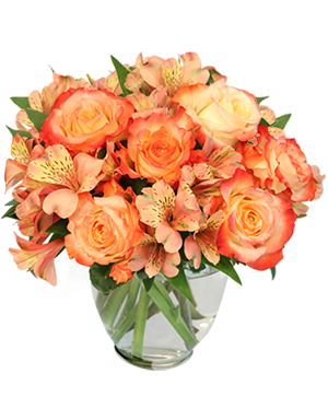 Ambrosia Roses Bouquet in Marion, IA | Lily and Rose Floral Studio
