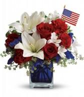 America the Beautiful H1632A