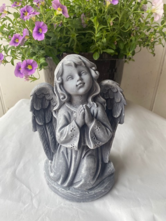Angel 23