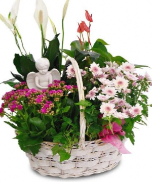 Angel Garden Basket  in Ozone Park, NY | Heavenly Florist