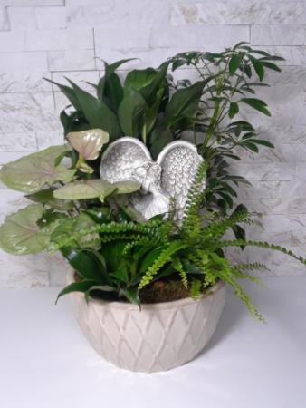 Angel Planter