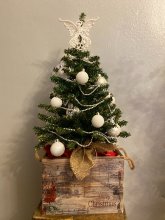 Angel Tree in Cardinal Box