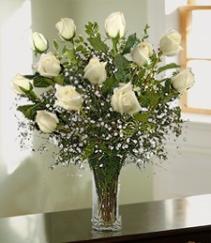 Angel White Roses