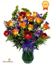 Animated Delicacy Colorful arrangement