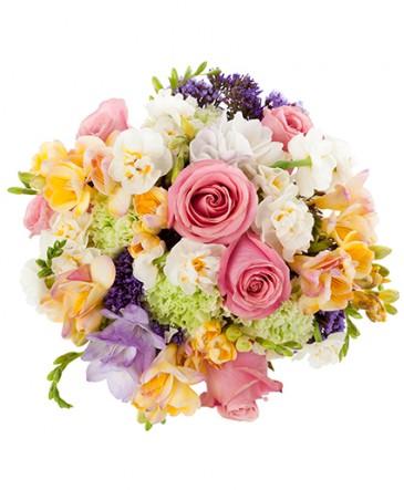 Anna Bouquet