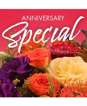 Anniversary Special Designer's Choice in Enosburg Falls, VT | Poppy's Railtrail Flowers & Boutique
