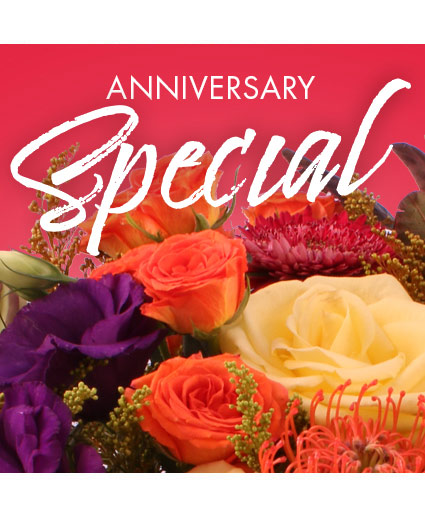Anniversary Special Designer's Choice